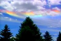 Jääkristallid Washingtoni kohal värvidemängus CTV - pics/2006/13450_2_t.jpg