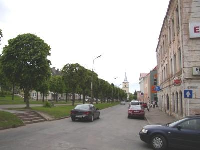 Üks Teise maailmasõja tummadest mälestusmärkidest  pärast sõda sündinud valgalased ei teagi, et varem olid nende puude asemel majad.  Foto: Üllas Linder - pics/2006/13495_5.jpg