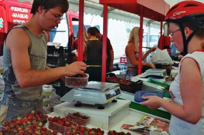 """Marjad sulle, raha mulle. """"Kauakestnud kuuma ilma tagajärjel on kodumaise maasika kõrghooaeg selleks aastaks läbi ning senise 20-30-kroonise keskmise kilohinna asemel tõuseb kodumaise maasikakilo hind 50-60 kroonini,"""" teatas esimese Eesti Maasikafestivali lõppedes Maasikakasvatajate Liidu juhatuse liige Siim Kabrits. Foto: Riina Kindlam - pics/2006/13721_2_t.jpg"""