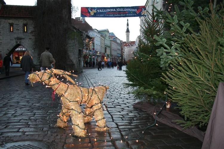 - pics/2007/12/jouludeestis/2.jpg