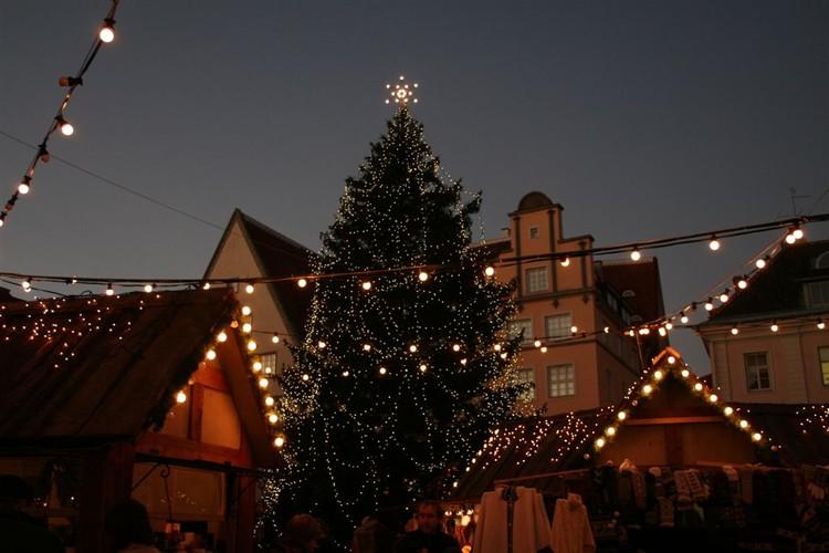 - pics/2007/12/jouludeestis/23.jpg