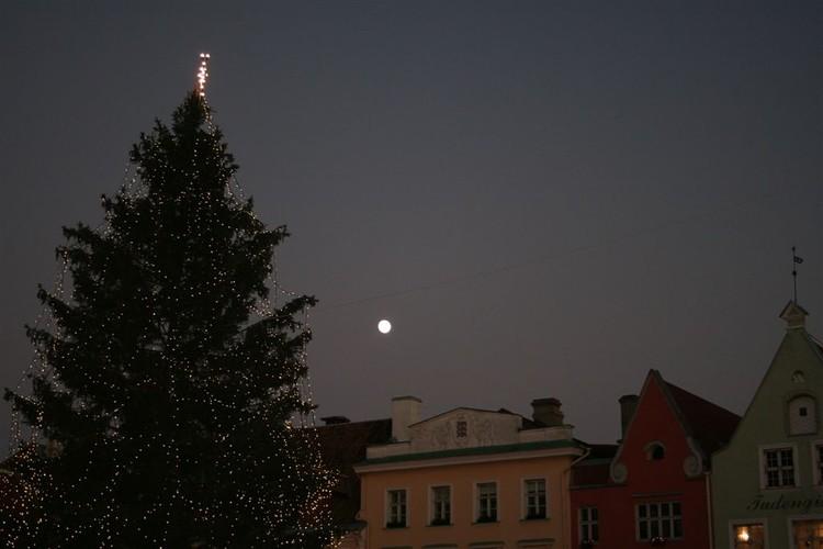 - pics/2007/12/jouludeestis/24.jpg