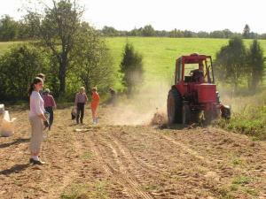Kuremäel on käimas kartulivõtmine.  Foto: Polikarpus - pics/2007/17597_1_t.jpg