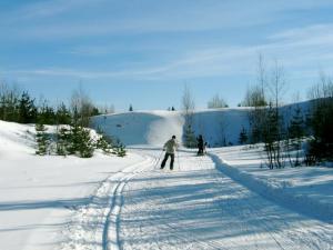 Suusapilt Kõrvemaa suusaradadelt    - pics/2008/12/22298_1_t.jpg