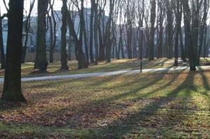 Kalamaja kalmistupark avati korrastatud kujul alles läinud suvel. - pics/2009/11/25866_13_t.jpg