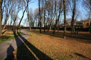 Kalamaja kalmistupark tänapäeval. - pics/2009/11/25866_5_t.jpg