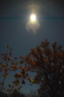 Hingedepäeva kuu  - pics/2009/11/25889_3_t.jpg