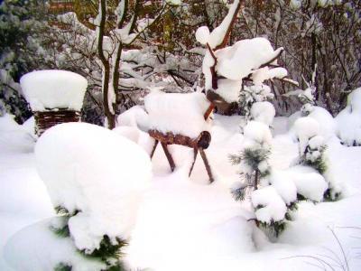 Puukits lumevangis. Raim Tominga kaamerast. - pics/2010/01/26721_1_t.jpg