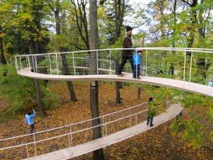 """AJUTINE: Kohale lennutati Jaapani arhitekt, peaaegu et soome nimega mees Tetsuo Kondo, kes püstitas Kadrioru pargi puude vahele kulgema õhuraja. """"Rada metsas"""" sai kuu aja jooksul (24. sept. – 22. okt.) nii populaarseks, et tihtilugu tekkis järjekord sellel jalutada soovijatest. Puude vahel kulgevat 95 meetri pikkust teerada kannab painutatud terastoru, mis ise püsti püsib ja vaid pisut puude vastu nõjatub. Kahtlusi raja kindlusest ei tekkinud sellel olles hetkekski. Ainult uuel tasandil olemise rõõm sügiskullas. Foto: Riina Kindlam - pics/2011/10/33821_1_t.jpg"""