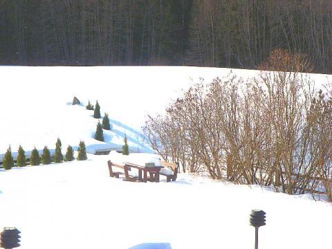 Kevade lootused Lahemaal - pics/2012/03/35483_002_t.jpg