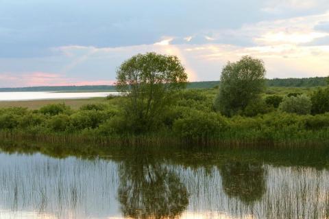 F: Indrek Sarapuu - pics/2012/06/36659_001_t.jpg