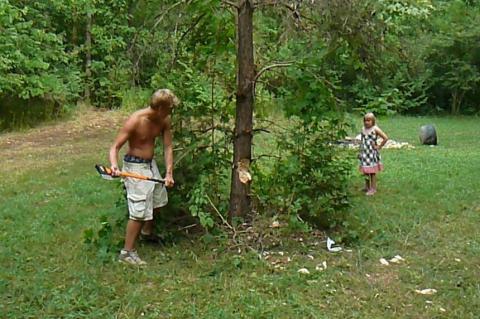 Kasvataja/ vetelpäästja (lifeguard) Sven Wichman cutting down his first tree (a new spectator sport?) - pics/2012/07/37054_003_t.jpg