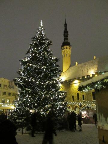 - pics/2012/12/38246_009_t.jpg