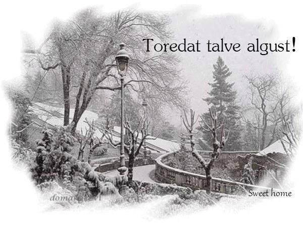 - pics/2013/12/40934_001_t.jpg