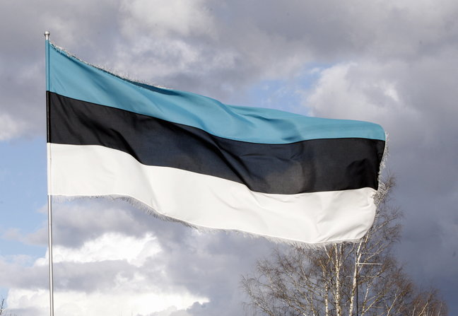 Eesti lipp. Foto: Margus Ansu - pics/2015/03/44578_001.jpg