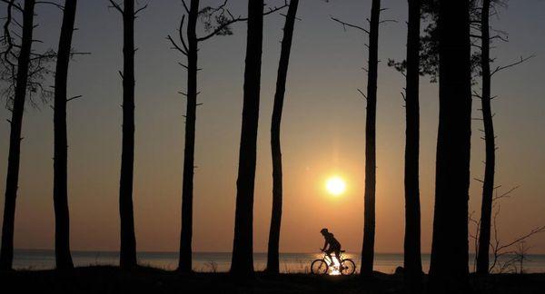 A cyclist rides a bike in Estonia. Hando Nilov/Enterprise Estonia - pics/2016/11/48767_001.jpg